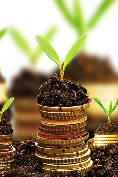 Процес инвестирања у пракси: проблеми и могућа решења