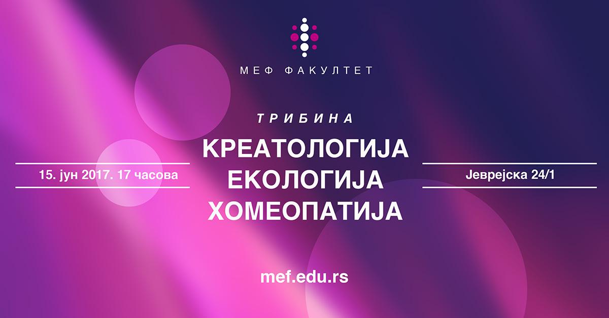 МЕФ новости
