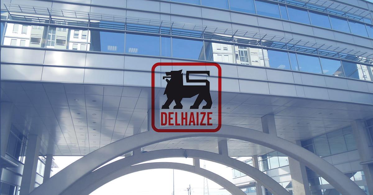 MEF fakultet - Delhaize Serbia